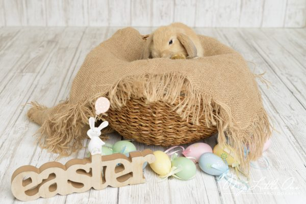 easter photo session